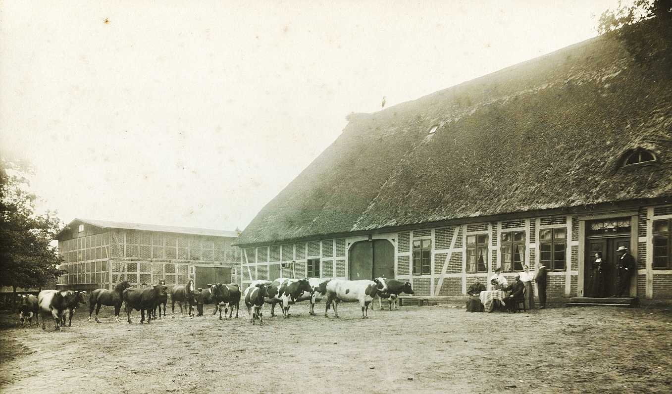 Schlüters Hof, ca. 1908