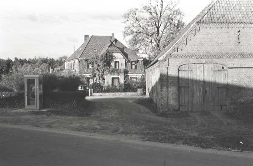 Bergmann 1985